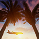 Airplane At Sunset - VideoHive Item for Sale