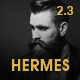 Hermes - Multi-Purpose Premium Responsive Magento 2 & 1 Theme - ThemeForest Item for Sale