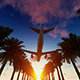 Palm Trees and Airplane - VideoHive Item for Sale