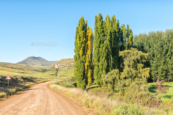 Farm landscape on road R396 between Rhodes and Barkly-East - Stock Photo - Images