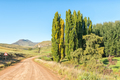 Farm landscape on road R396 between Rhodes and Barkly-East - PhotoDune Item for Sale