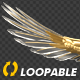 Gold Eagle - Front View - Transparent Loop - VideoHive Item for Sale