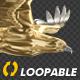 Gold Eagle - Side View - Transparent Loop - VideoHive Item for Sale