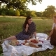 Two Young Women Are Eating Strawberries with Wine on a Picnic - VideoHive Item for Sale
