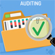 Auditing Business Accounting Concept - GraphicRiver Item for Sale