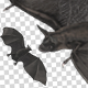 Bat Swarm Transition - VideoHive Item for Sale