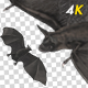 Bat Swarm Transition - 4K - VideoHive Item for Sale