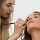 Makeup Artist Using Eye Shadow Brush for Applying Makeup To Woman - VideoHive Item for Sale