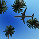 Airliner Passing Over Palm Trees - VideoHive Item for Sale