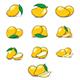 Vector Mango Collection