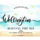 Wellington Font Duo + Extras - GraphicRiver Item for Sale