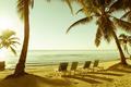 Tropical Beach Retro Vintage - PhotoDune Item for Sale