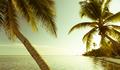 Vintage Tropical Beach Scene - PhotoDune Item for Sale