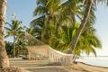 Resort Vacation Hammock - PhotoDune Item for Sale