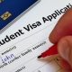 Pen Voting Approved in Checkbox in Blank Student Visa Application Form - VideoHive Item for Sale