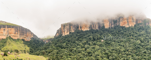 Gudu Forest and Gudu falls near Mahai in the Drakensberg - Stock Photo - Images