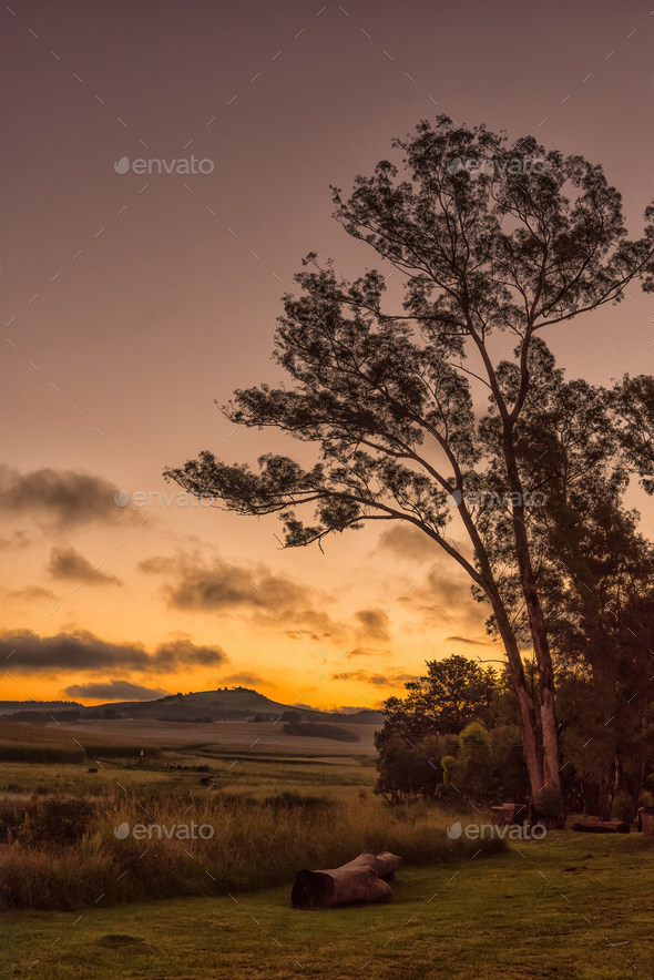 Sunset scene at Tortoni near Maclear in the Eastern Cape - Stock Photo - Images