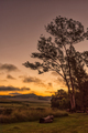 Sunset scene at Tortoni near Maclear in the Eastern Cape - PhotoDune Item for Sale