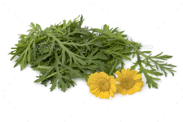 Fresh raw Tong ho spinach and flowers - Stock Photo - Images