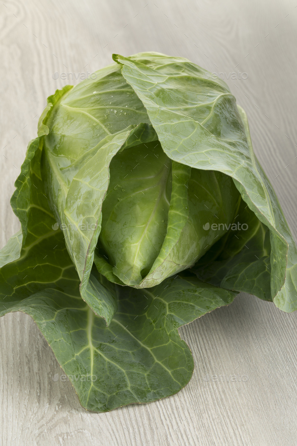 Fresh whole pointed cabbage - Stock Photo - Images
