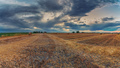 Harvested wheat fields in the Italian summer evening - PhotoDune Item for Sale