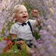 Happy Baby in Lavender - VideoHive Item for Sale