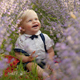 Handsome Children in Lavender - VideoHive Item for Sale