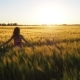 Girl in a Wheat Field - VideoHive Item for Sale