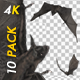 Bats - Kit Pack of 10 - 4K - VideoHive Item for Sale