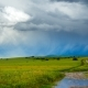 Stormy Clouds Quickly Move Over the Green Fields of Young Wheat Lit By Sunlight During a Storm - VideoHive Item for Sale