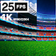 Flying On Grass In Stadium HD Pack 03 - VideoHive Item for Sale