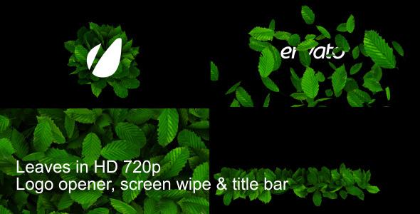 Leaves Logo Wipe And Titlebar HD