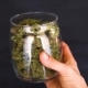Cannabis in Hand 1. Holding and Inspecting a Bud of Good Quality Marijuana - VideoHive Item for Sale