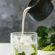 Matcha iced latte - PhotoDune Item for Sale