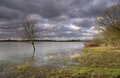 High water in the Rhine - PhotoDune Item for Sale