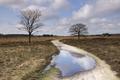 The Regte Heide - PhotoDune Item for Sale