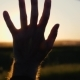 Hand of a Man at Sunset. Man's Hand From the Car Window in the Sun - VideoHive Item for Sale