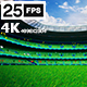 Green Flying On Grass In Stadium 4K - VideoHive Item for Sale