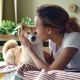 Happy Girl Student Is Feeding Her Small Dog and Caressing It Lying on Bed at Home, While Animal Is - VideoHive Item for Sale