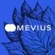Mevius - SaaS & Startup Landing Page