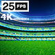 Green Flying On Grass In Stadium Night 4K - VideoHive Item for Sale