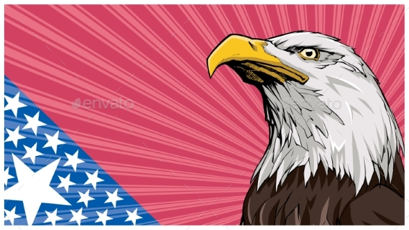 Bald Eagle Background - Animals Characters