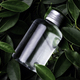 Clear small bottle placed on top of bush (with Clipping Path) - PhotoDune Item for Sale
