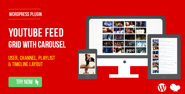 YouTube Feed : User, Channel and Playlist for WordPress - CodeCanyon Item for Sale