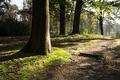 Hondsdonk manorial estate - PhotoDune Item for Sale