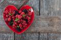 Red berries - PhotoDune Item for Sale