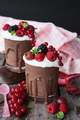 Mousse of chocolate with fresh berries - PhotoDune Item for Sale