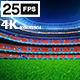 Red Flying On Grass In Stadium Night - VideoHive Item for Sale