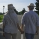 Stylish Senior Couple Walking Holding Hands - VideoHive Item for Sale