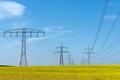 Power supply lines in a field of flowering oilseed rape - PhotoDune Item for Sale